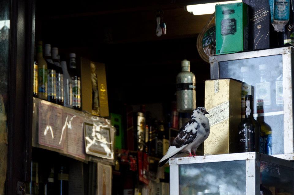 Old San Juan store, Puerto Rico