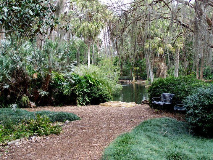 Bok Tower Gardens view in January
