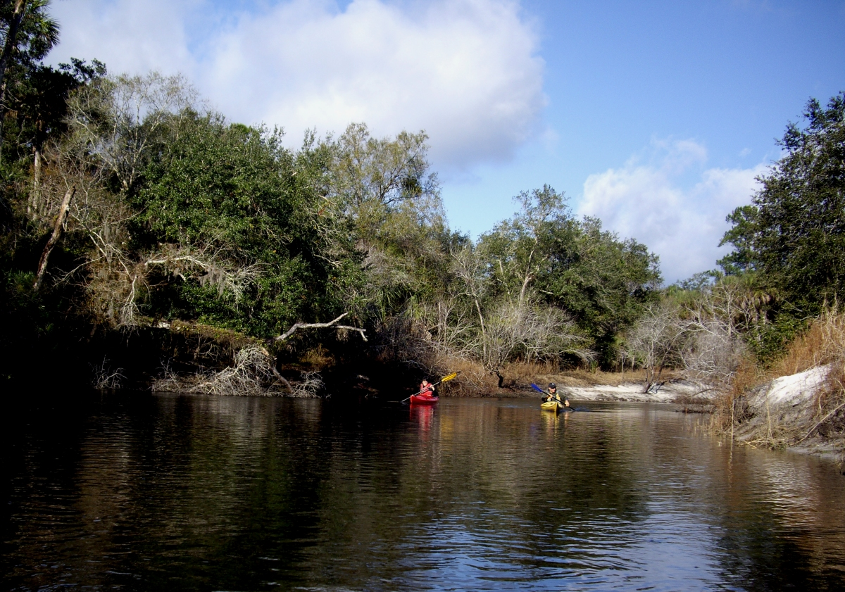 Kayaking in Central Florida, Econlockhatchee River, in the Little-Big Econ State Forest