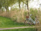 Getting Lost on a Wednesday: Netherlands on a Bicycle