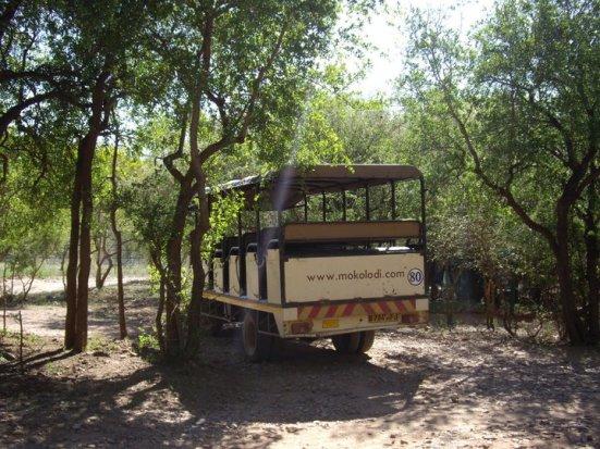 Mokolodi Nature Reserve truck