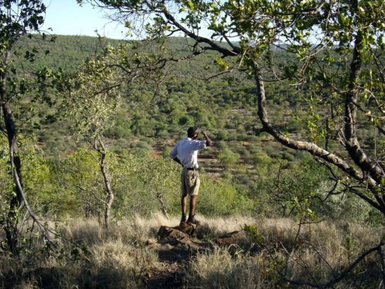 Our guide, looking for giraffes, Mokolodi Natural Reserve
