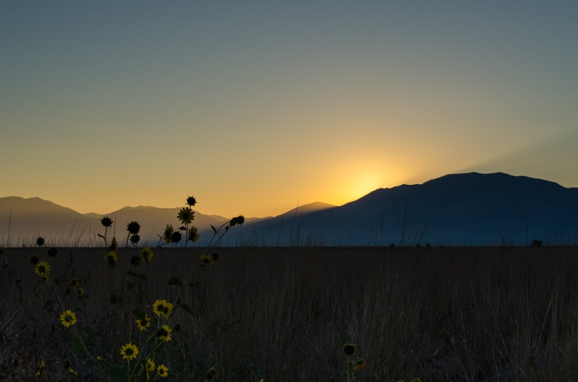 Sunrise at Bear River Migratory Bird Refuge