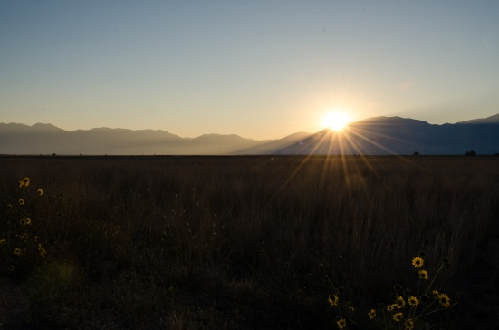 Sun rose over Bear River Migratory Bird Refuge