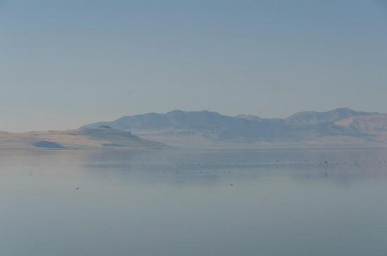 The Great Salt Lake - driving to Antelope Island