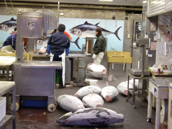 Purchased tuna being processed, Outer Market, Tsukiji Market, Tokyo