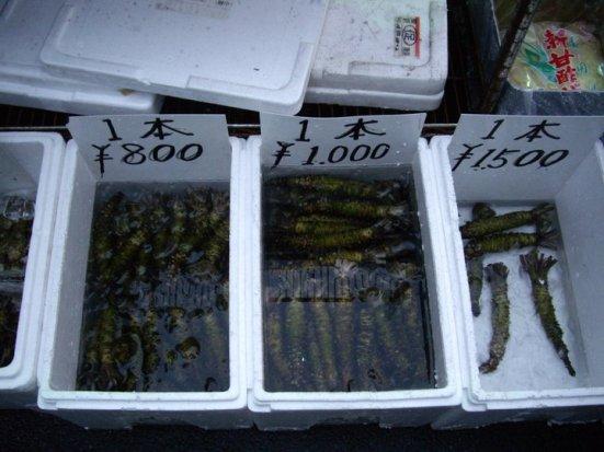 Wasabi roots at the outer market, Tsukiji Fish Market, Tokyo