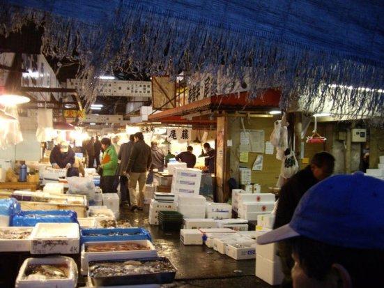 Inside the wholesale market, Tsukiji Fish Market, Tokyo