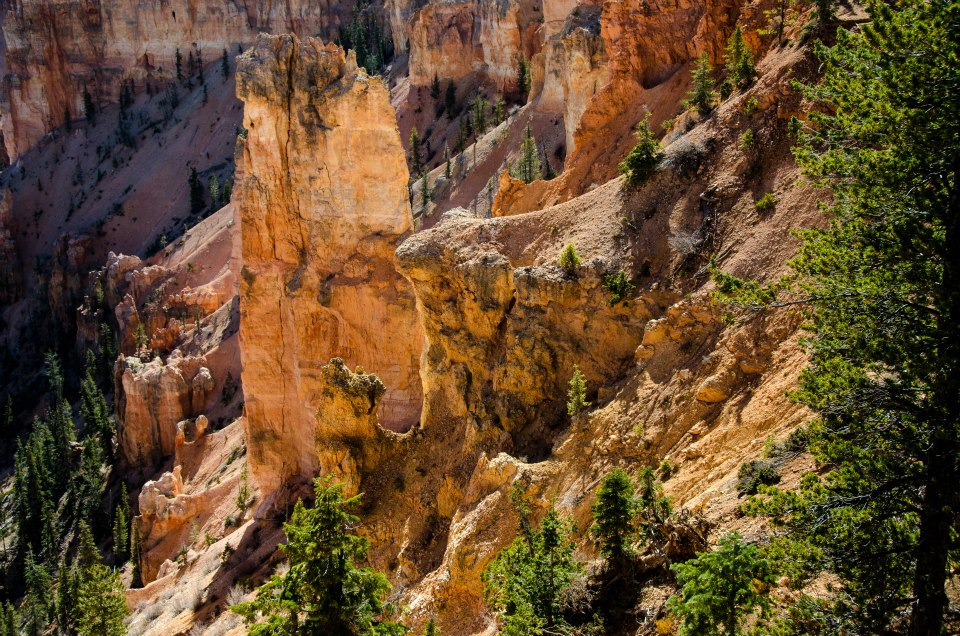 Ridges of Bryce Canyon National Park