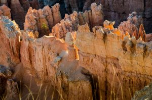 Bryce Point sunrise - the hoodoos aglow