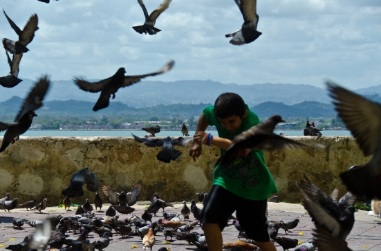 Running through pigeons at Parque de las Palomas, San Juan, Puerto Rico