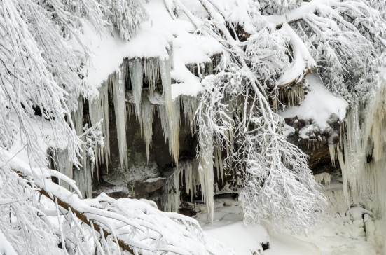 A wall of icicles at the Blackwater Falls