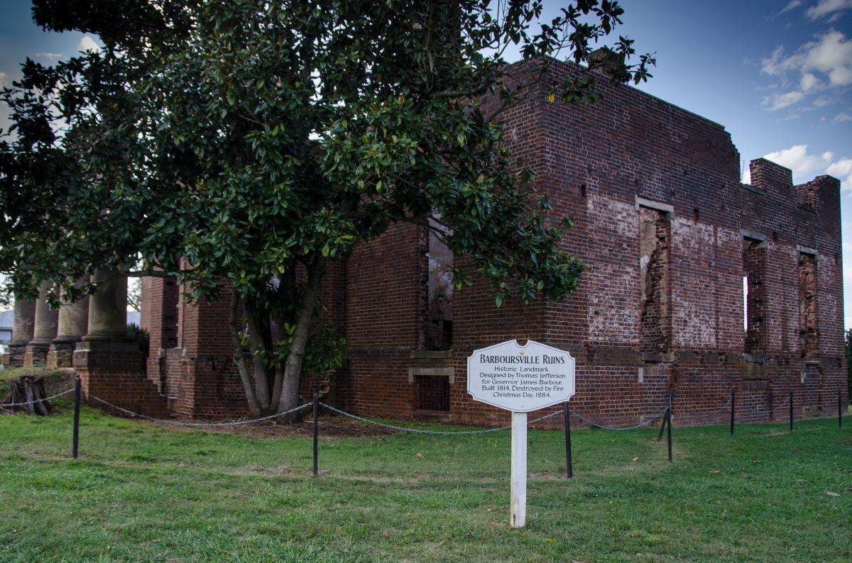 Barboursville Ruins and magnolia, Virginia