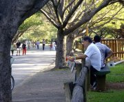 Reading a newspaper at Ibirapuera Park, Sao Paulo, Brazil