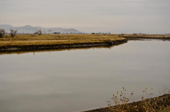River bend, Bear River Migratory Bird Refuge