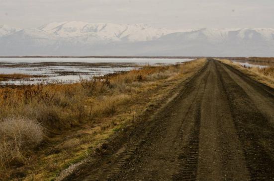 Road at the Bear River Migratory Bird Refuge
