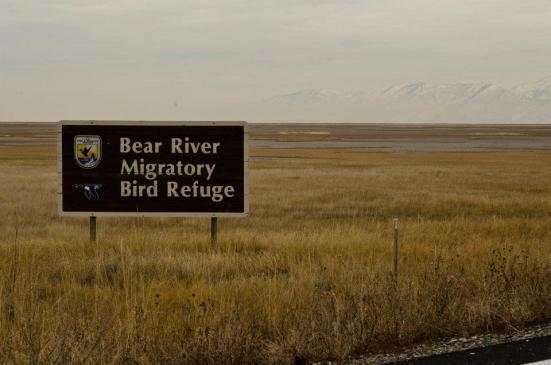 Welcome sign to the Bear River Migratory Bird Refuge