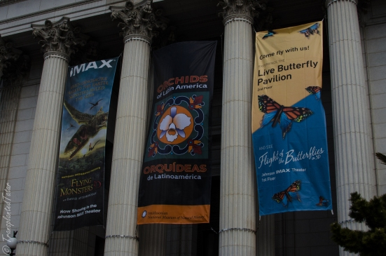 Front entrance of the Museum of Natural History, Washington DC
