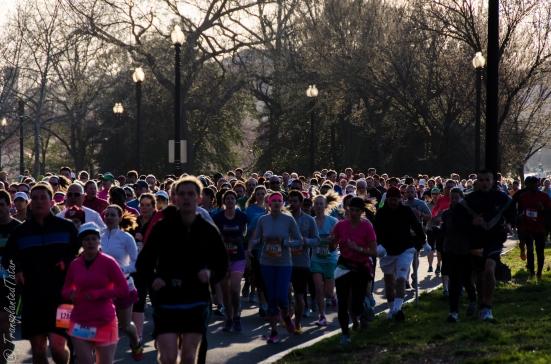 Runners, Cherry Blossom Ten Mile Run