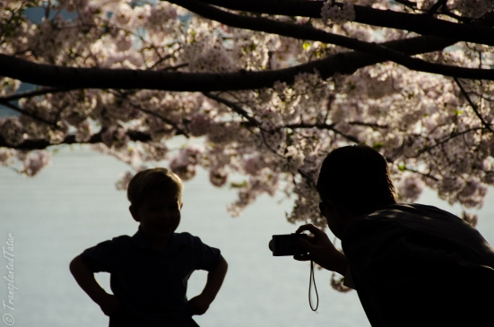 Boy and father with cherries on Tidal Basin