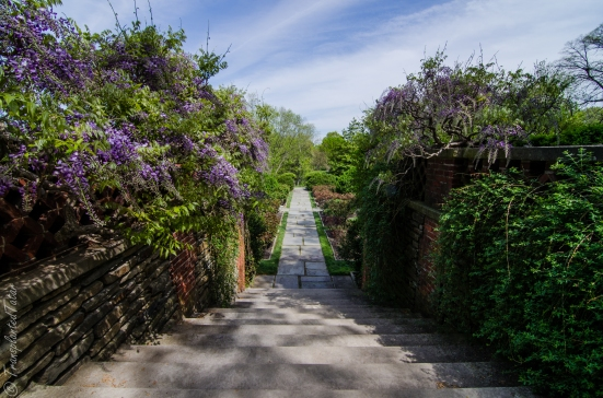 To the Rose Garden, Dumbarton Oaks, Washington DC