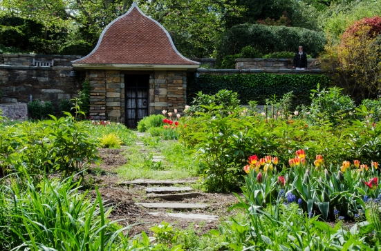 Cutting Garden in Dumbarton Oaks (April)