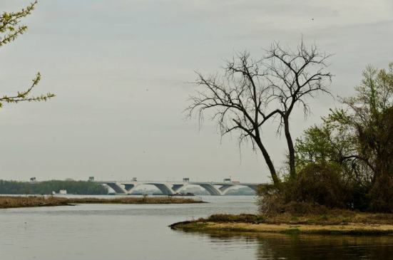 At Dyke Marsh Wildlife Preserve