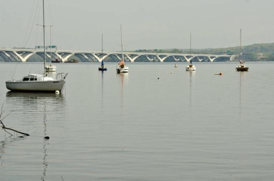 The Woodrow Wilson Memorial Bridge view from Dyke Marsh, Alexandria, VA