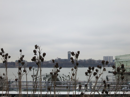 Grey Hudson, view from The High Line
