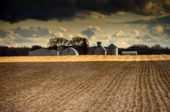Fields out of train window