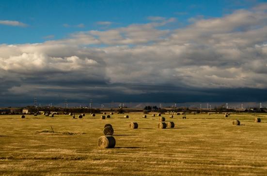 Fields, along railroad