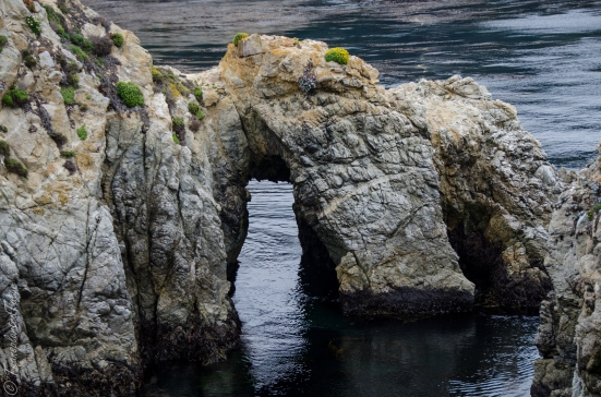 Stone arch, Point Lobos State Reserve