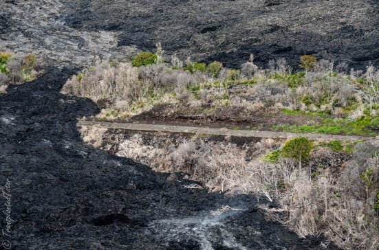 Helicopter flight over a Burning trees, Kilauea Volcano, Hawaii