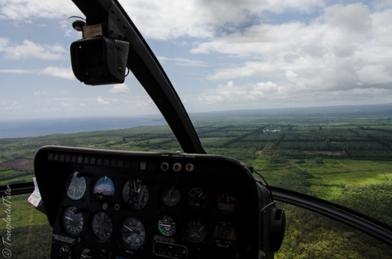 Toward macadamia farms on Helicopter, Hilo, Hawaii