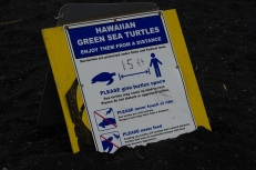 Turtle warning, Punalu'u Black Sand Beach, Big Island, Hawaii