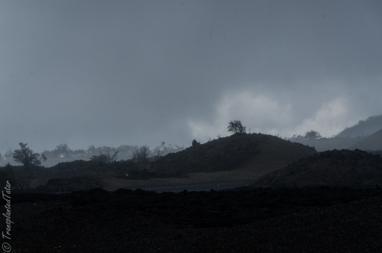 Desolate landscape at the base of Mauna Kea, Hawaii
