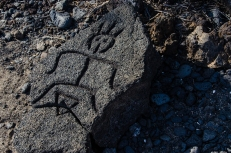Petroglyph along the trail at the Puako Petroglyph Archaeological Preserve, Hawaii