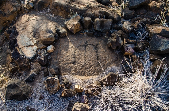 Turtle at the Puako Petroglyph Archaeological Preserve