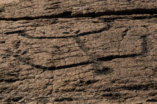 Carving of a male figure at the Puako Petroglyph Archaeological Preserve, Hawaii