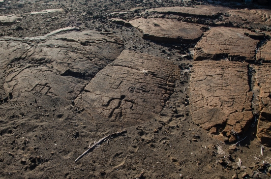 A group of petroglyphs, Puako Petroglyph Archaeological Preserve, Hawaii