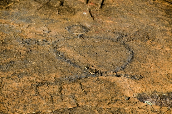 A turtle carved at the Puako Petroglyph Archaeological Preserve, Hawaii
