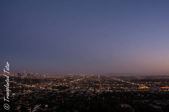 View of Los Angeles from Griffith Observatory
