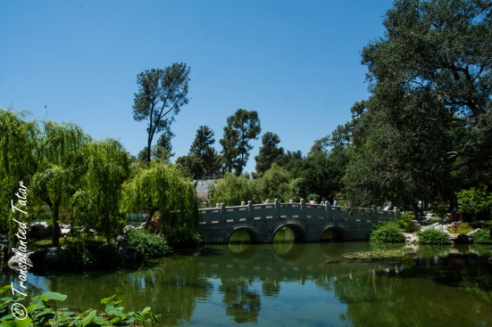 Bridge at The Garden of Flowing Fragrance, Huntington Library, Los Angeles