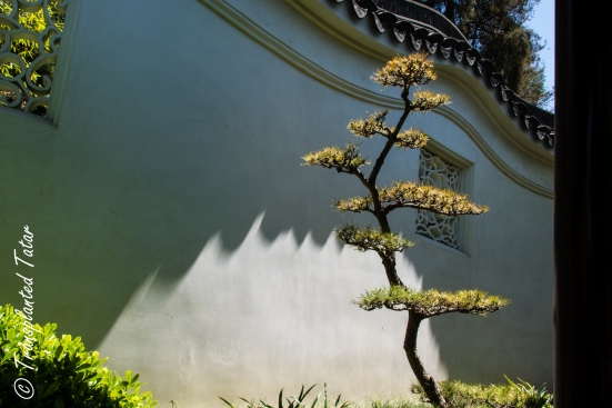 Chinese garden wall, Huntington Library, Los Angeles