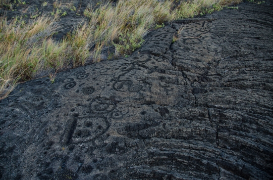 Petroglyphs of Pu'u Loa Trail, Hawai'i Volcanoes National Park