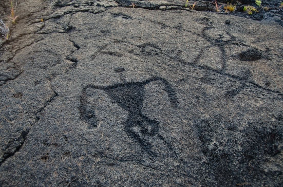 Carving of a human, Puu Loa Petroglyph Trail, Hawaii Volcanoes National Park
