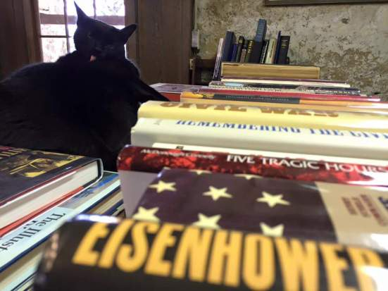 Black cat grooming among books, Baldwin's Book Barn